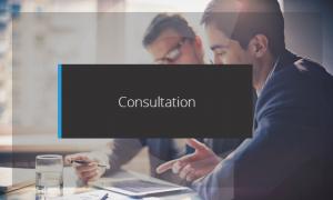 consultation-services